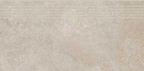 Dark Beige Step Tile 30 x 60